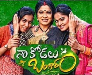 Naa Kodalu Bangaram Daily Serial -E 191- 21st  Feb