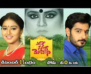 Evare Nuvvu Mohini Telugu Daily Serial- E53 – 22nd Feb
