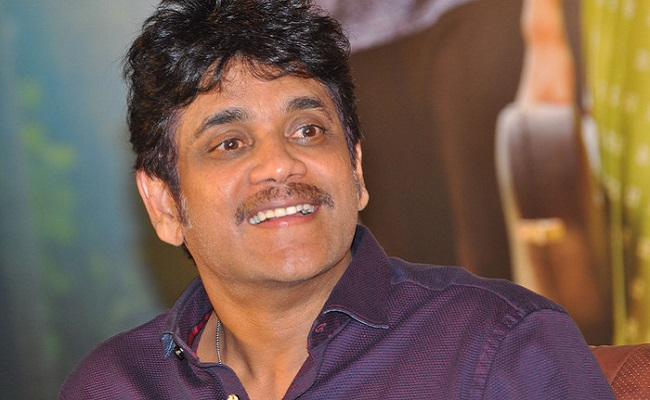 No Solo Movies for Nagarjuna?